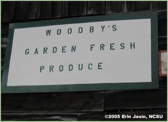 f_woodby_3.jpg