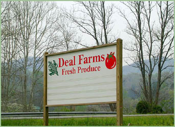 deal3.jpg
