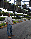 Danny & Kathryn McConnell: McConnell Farms, Inc. photo