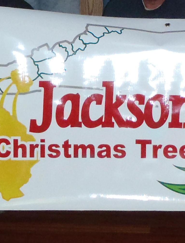 Jacksontreef