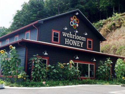 Jessica Wehr, Wehrloom Honey photo