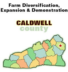 Farm Diversification, Expansion & Demonstration headline