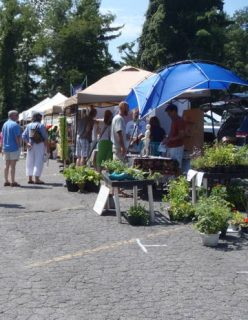 Watauga County Farmers Market photo